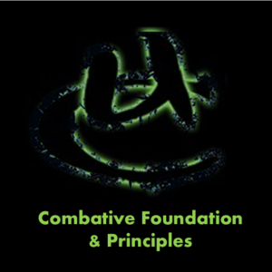 Combative Foundation & Principles